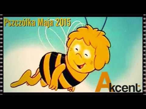 AKCENT - Pszczółka Maja